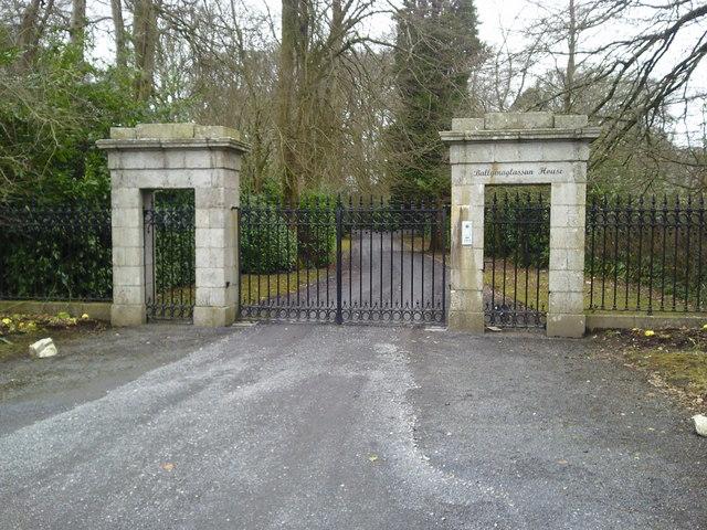 Gate, Ballymaglasson, Co Meath