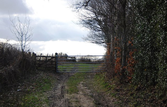 Gate on the footpath heading west from Riseden Lane