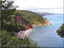 SX9265 : Oddicombe Beach and Petit Tor Point by David Dixon