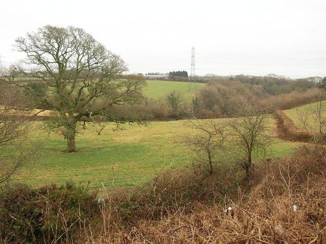 Field by Broadley Industrial Estate