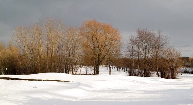 Phoenix golf course in February snow