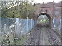 TR0650 : Railway bridge near Godmersham by David Anstiss