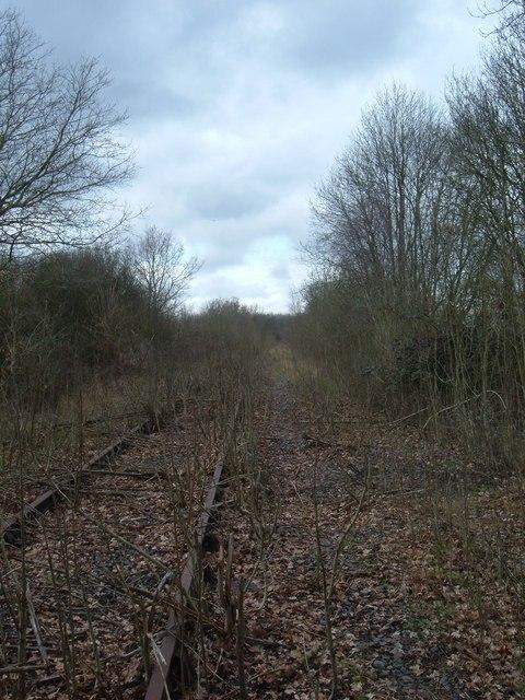 SP7427 : Disused Railway LineDisused Railway Line (C) Mr Biz :: Geograph Britain and IrelandDisused Railway Line (C) Mr Biz - 웹