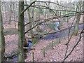SJ6170 : Small footbridge in Petty Pool Woods by Dr Duncan Pepper