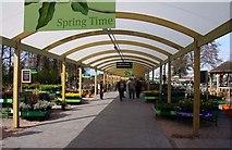 SJ7243 : Covered walkway at Bridgemere Garden World by Steve Daniels