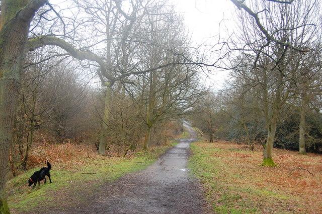 The Essex Way 8