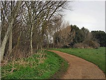 TQ4002 : Chatsworth Park, Telscombe by Paul Gillett