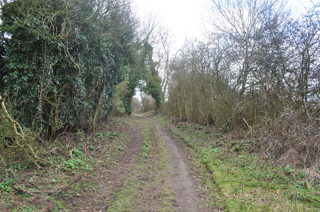 Southwold Railway Trackbed