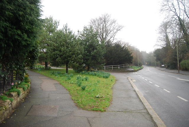Junction of Downs Rd and Elphinstone Rd