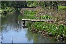 SU4828 : River Itchen, Winchester by Andrew Mathewson