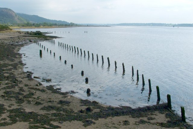 Posts on the shore