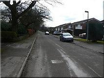 SJ9283 : Towers Road (1) by Alan Murray-Rust