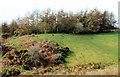 J3370 : The Lagan Meadows walk, Belfast (22) by Albert Bridge