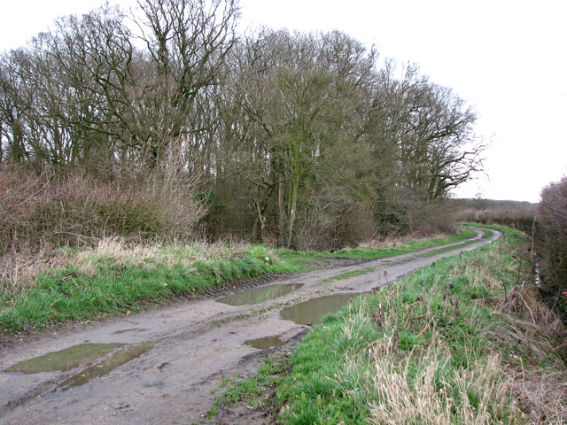 View east along Whitepost Lane