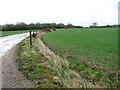 TM1780 : View along Wood Lane by Evelyn Simak