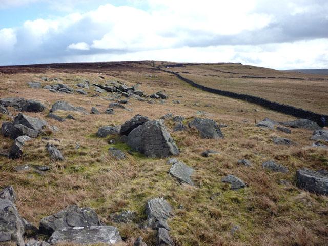 Gritstone boulders