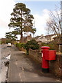 SY9995 : Broadstone: postbox № BH18 173, Corfe Way by Chris Downer