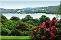 SD3195 : The garden of Brantwood, Cumbria looking over Coniston Water by Roger May