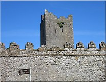 N0520 : Clonony Castle, County Offaly by Sarah777