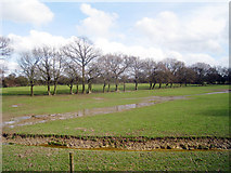 TQ3643 : Deer Park at British Wildlife Centre, Lingfield by Oast House Archive