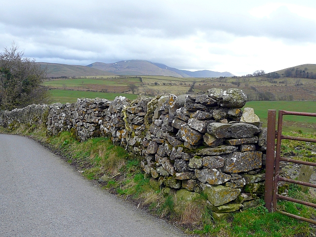 A bumpy drystone wall
