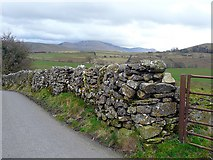 NY2536 : A bumpy drystone wall by Rose and Trev Clough