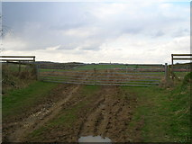 SE9742 : Gated farm track off the Hudson Way by JThomas
