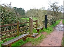 SO8581 : Staffordshire & Worcestershire Canal boundary stone Worcestershire side by P L Chadwick