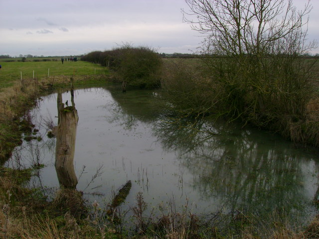 Field  edge  pond  at  Woodhouse  Farm