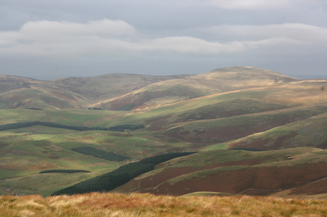 Cheviot and the Scottish border from Windy Gyle summit