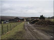 SE6691 : Footpath  to  Grays  Farm by Martin Dawes
