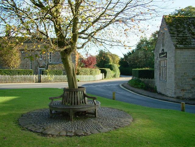 The seat around the tree