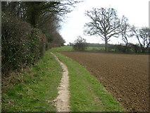 TQ9534 : Footpath beside Barn Wood by David Anstiss