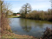 TM2493 : Pond beside Alburgh Road, Hempnall Green by Evelyn Simak