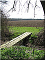 TM2492 : Plank bridge over drainage ditch by Evelyn Simak