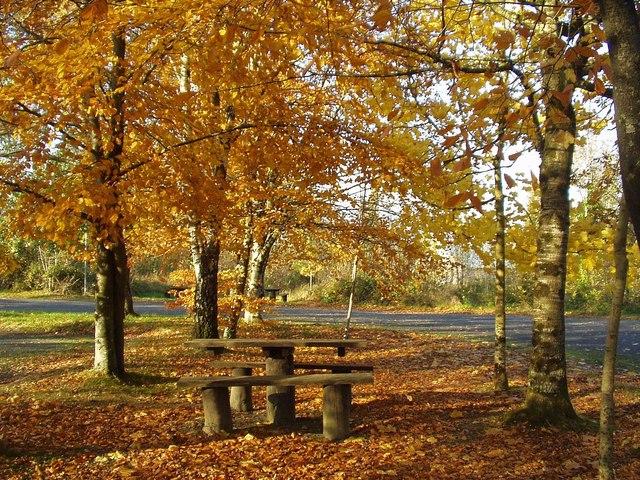 Cavan in Autumn