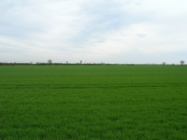 Farmland near Bilton