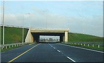 N5944 : Near Kinnegad, motorways merge by Sarah777
