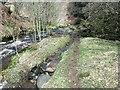 NS7178 : Spate channel, Garrel Burn by Robert Murray