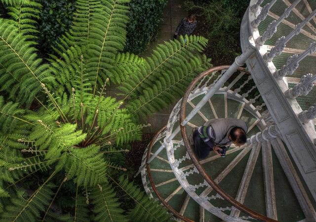 Spiral Stairs, Spiral Growth