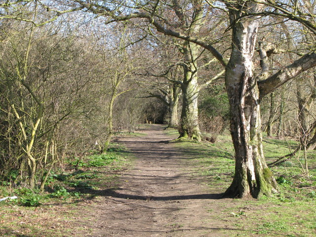 Riverbank footpath west of West Green (3)