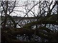 NY2948 : Moorthwaite Lough by John Lord