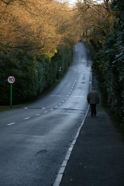 Road into Gosforth Park, Newcastle