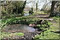 TQ2965 : Beddington Park:  River Wandle by Dr Neil Clifton