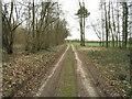 SU6648 : Well used farm track by Sandy B