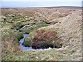 NY8103 : Swallow Hole In Birk Dale by James T M Towill
