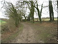 SU6648 : Longroden Lane by Sandy B