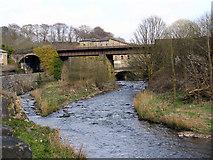 SD7915 : River Irwell at Brooksbottoms. by David Dixon