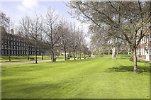 TQ3081 : Gray's Inn Gardens, WC1 by Andrew Hackney