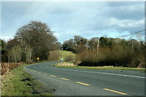 N2480 : The R194 in County Longford by Sarah777